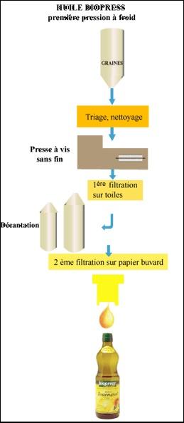 Les Procédés de Fabrication Huile Biopress première pression à froid